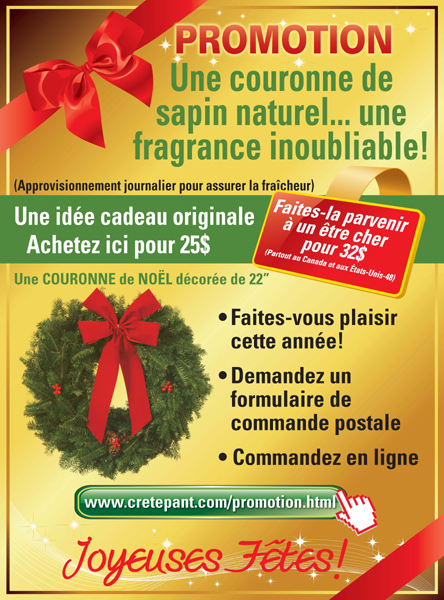 Couronne sapin Baumier - Offre Special